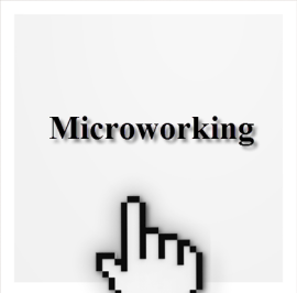 New Employment Model – Microworking