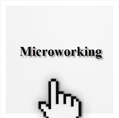 New Employment Model - Microworking